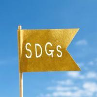 「SDGs」認知は5割超も行動には移せず?