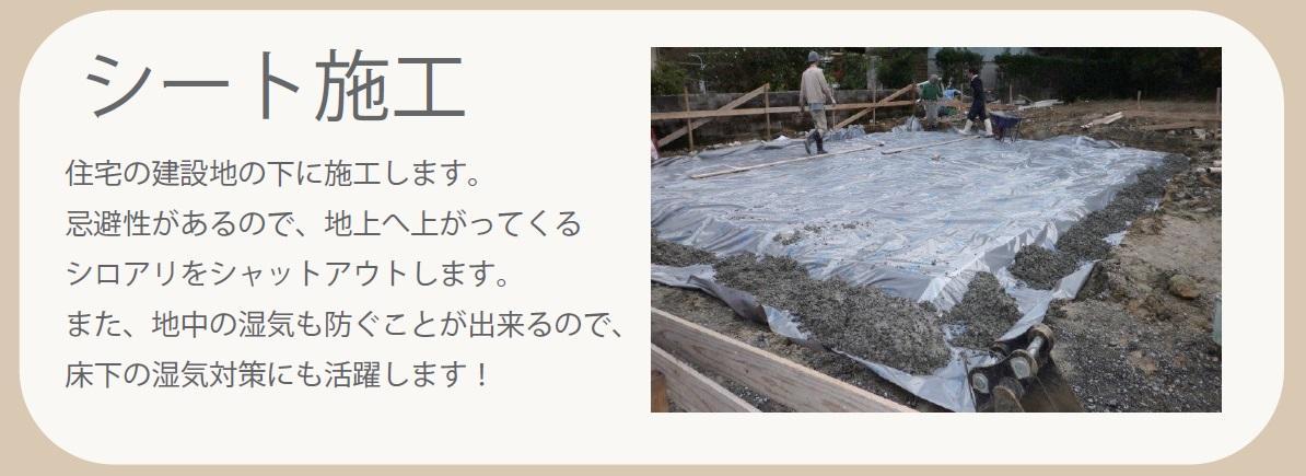 白蟻シート画像7.jpg